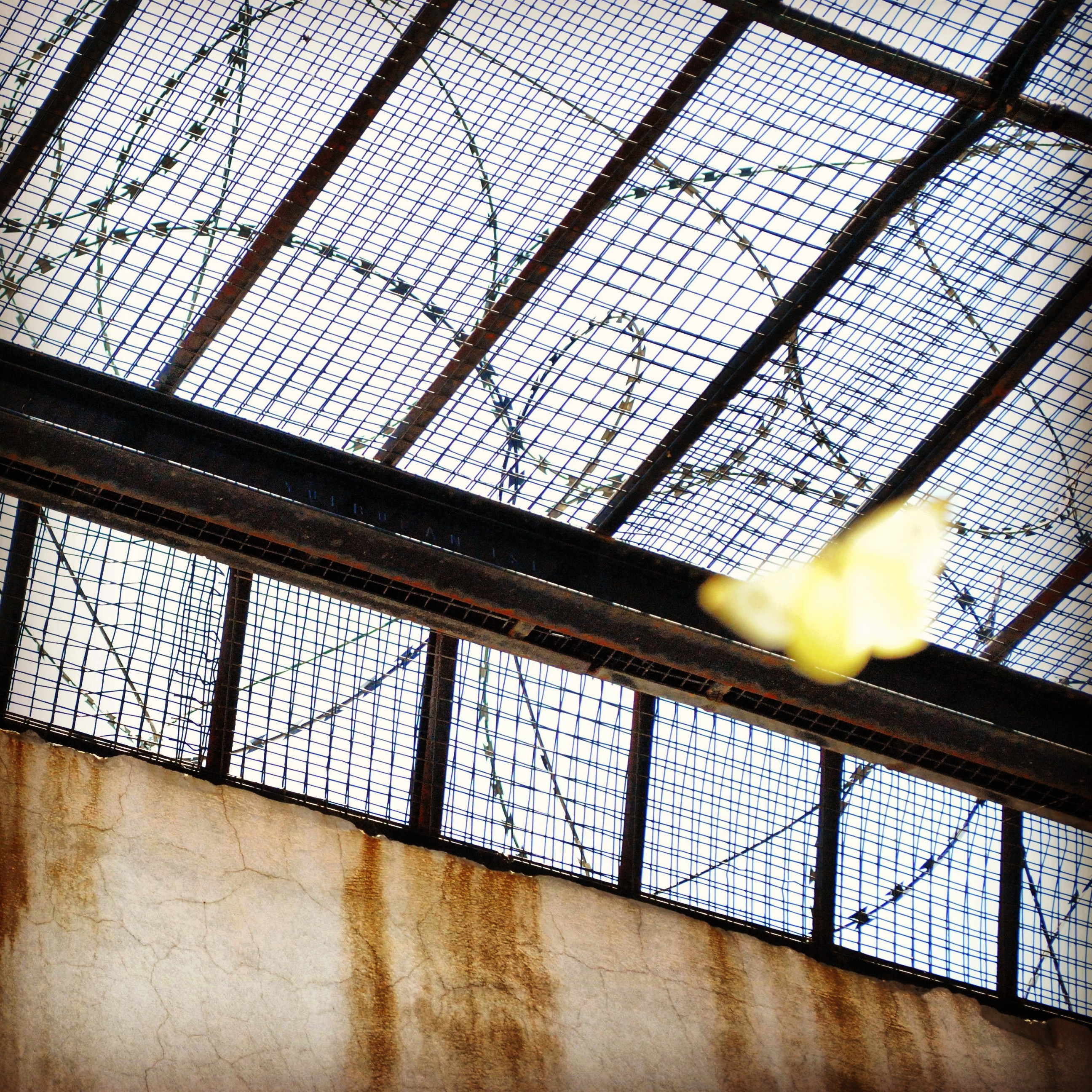 تقييم سجون النساء في لبنان- التقرير الأول